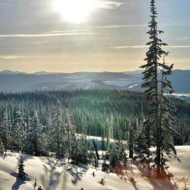 @alpine_hiker